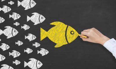 ¿Te conviene contratar un influencer?
