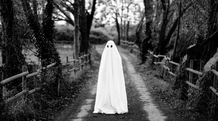 empresa fantasma, factura fantasma, SAT