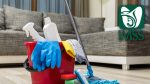 Procedimiento para la inscripción de trabajadores domésticos al IMSS en fase II