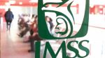 Consideraciones sobre los requisitos del IMSS en servicios especializados