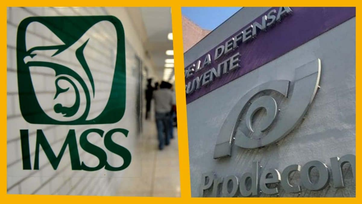 Prodecon logra que el IMSS libere las cuentas de un patrón que cumplió de forma espontánea